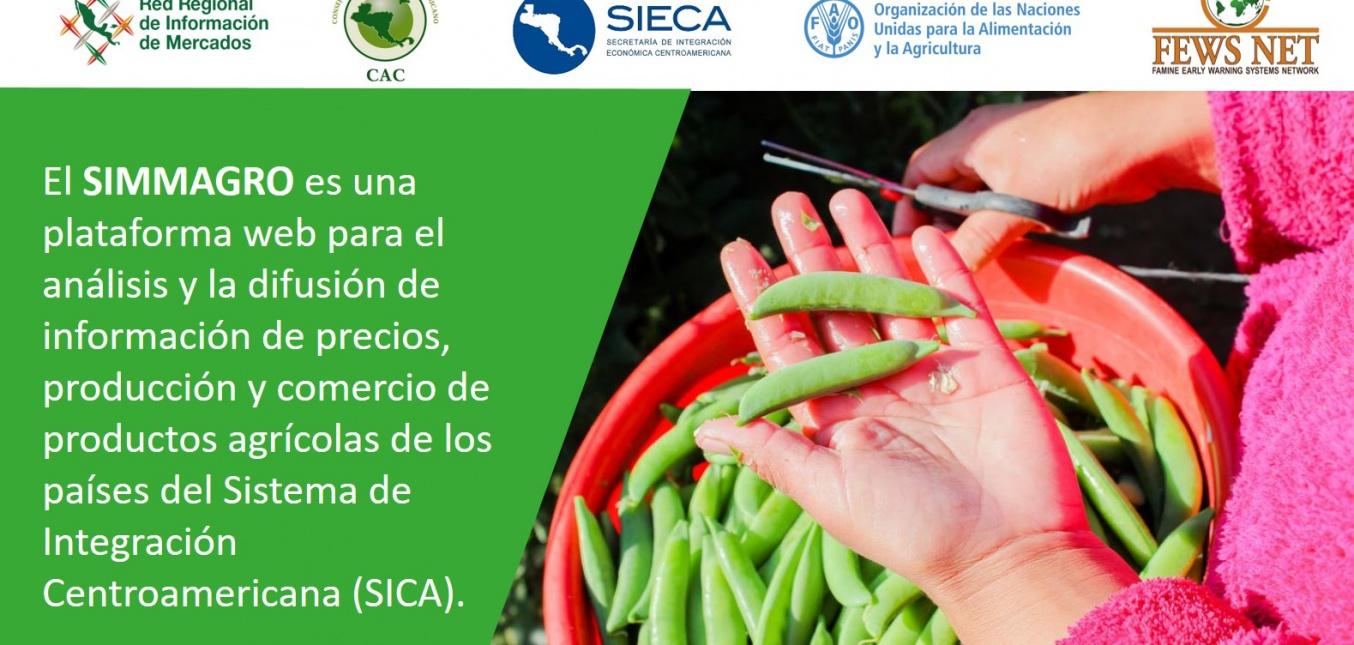 Lanzan nueva plataforma para monitorear precios de los alimentos básicos en Centroamérica