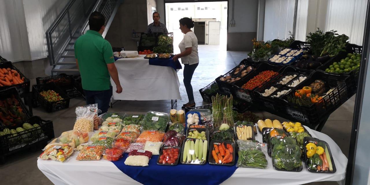 Mercado Regional Chorotega reúne a posibles compradores con los futuros vendedores de la central de abastecimiento