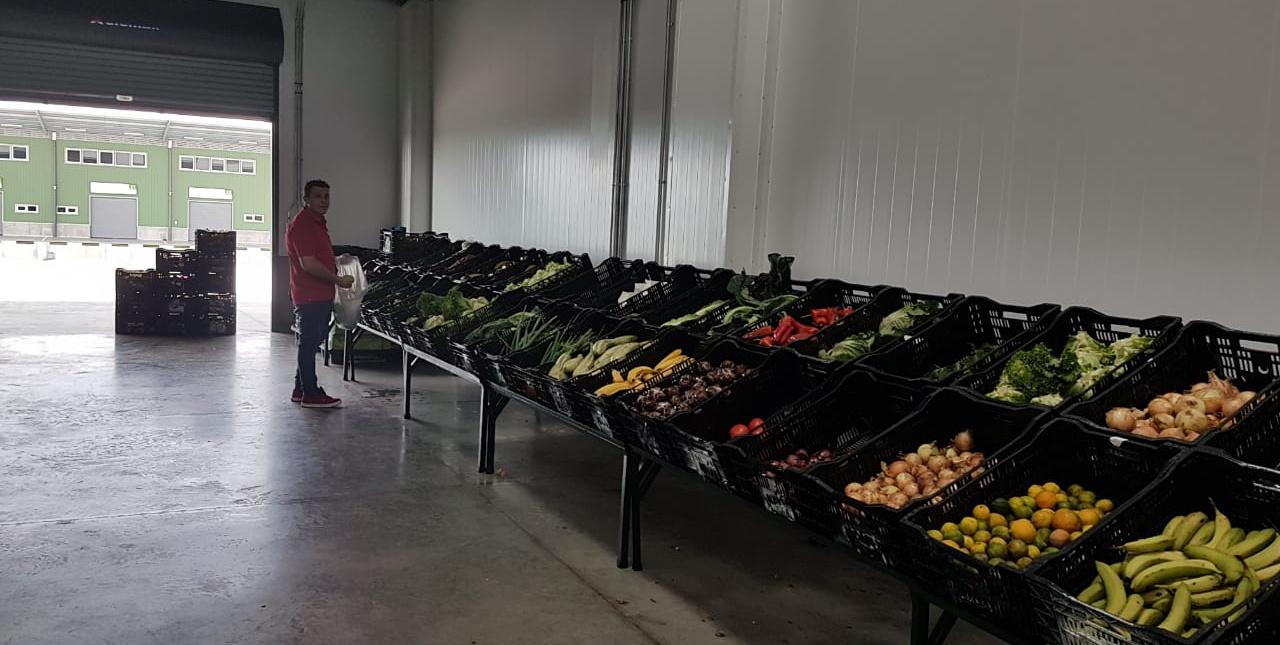 Mercado Mayorista Chorotega lanza resultados positivos tras un mes en operación