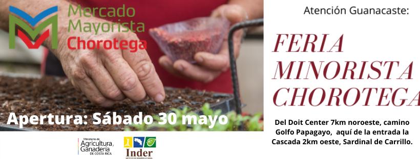 Feria Minorista Chorotega ofrece un espacio al sector productor en tiempos de COVID-19
